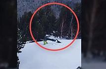Chết cười gà gô rừng đuổi theo người trượt tuyết ăn thua đến cùng