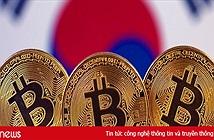 Sinh viên Hàn Quốc tự tử do thua lỗ với tiền ảo
