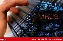 Tháng 1/2019: Hơn 300 cuộc tấn công mạng vào các hệ thống thông tin của Việt Nam