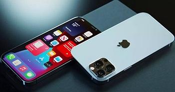 Chiêm ngưỡng bản dựng iPhone 2021 Pro với Touch ID dưới màn hình, bỏ cổng kết nối