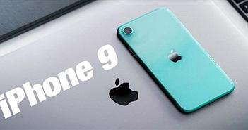 iPhone 9 có thể ra mắt sớm sau khi được phát hiện trên Best Buy