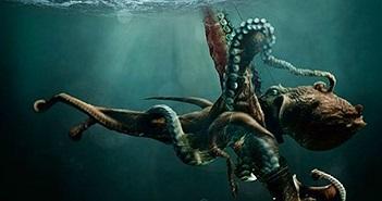 Sự thật choáng ngợp về thủy quái Kraken