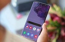 Samsung có thể sẽ dùng màn OLED của BOE cho Galaxy S21
