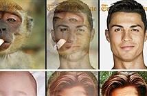 Khi trò chơi Gương mặt bạn giống với người nổi tiếng nào gặp phải... ca khó