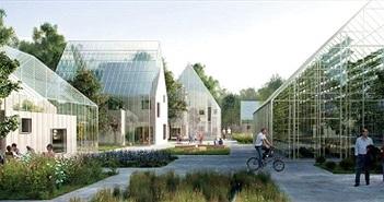 Dự án mơ mộng về ngôi làng sinh thái không dùng điện ở Hà Lan