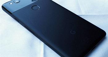 """Sau nửa năm, Pixel 2 vẫn """"hot"""" không kém iPhone X"""