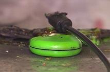 Con quay fidget spinner made in China bắt đầu bị cháy nổ