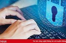 80% rò rỉ dữ liệu do người dùng tự làm lộ thông tin khi truy cập các ứng dụng trực tuyến