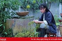 Việt Nam hot siêu to khổng lồ, dân mạng thế giới đang xem vlog gì?