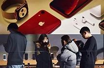 Doanh thu iPhone giảm 3,5 tỷ USD trong Q3, đáng báo động