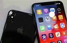 iPhone rớt thê thảm, Apple vẫn có doanh thu kỷ lục