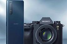 Sony Xperia 5 II trên Geekbench: Snapdragon 865, RAM 8GB và Android 10