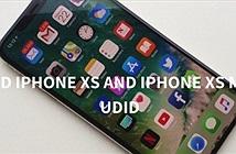 Lý do và cách lấy thông tin UDID của iPhone Xs và Xs Max