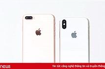 Vì sao iPhone 8 có thể ngáng đường iPhone X?