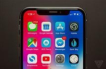 Apple chưa từng có ý định mang Touch ID lên iPhone X