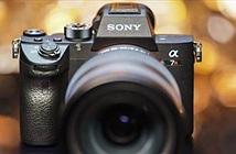 Sony A7RIII có dải tương phản động gần bằng Nikon D850