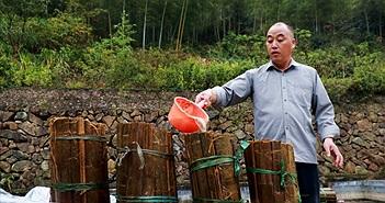 Chuyện lạ hôm nay: Người đàn ông mua nước tiểu bé trai giá cao