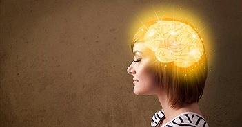 Với bộ não, tôn giáo hay cờ bạc đều giống nhau