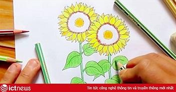 """""""Hoa hướng dương"""" bất ngờ dẫn đầu tìm kiếm của Google tại Việt Nam"""
