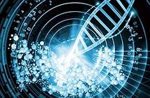 Nga xây dựng bộ dữ liệu DNA lớn nhất thế giới