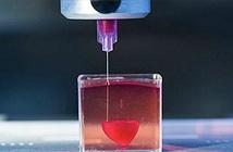 Cách tạo ra nội tạng bằng công nghệ in 3D