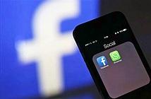 Brazil giam giữ lãnh đạo Facebook do không cung cấp thông tin người dùng