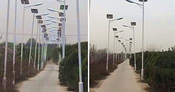 Kỳ lạ thôn nhỏ 3km có tới 1000 đèn cao áp, hóa ra...