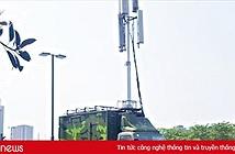 Tạo điều kiện cho nhà mạng đảm bảo thông tin liên lạc trong phòng dịch Covid-19