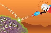Tìm ra cơ chế giúp vi khuẩn không chỉkháng mà còn ăn cả thuốc kháng sinh