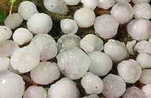 Dùng vật liệu nào lợp mái để phòng tránh mưa đá tốt nhất?