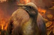 Lý do giúp tổ tiên loài chim sống sót sau Đại tuyệt chủng