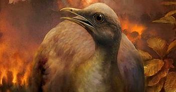 """Lý do giúp tổ tiên loài chim sống sót sau """"Đại tuyệt chủng"""""""