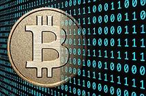 Kinh doanh tiền ảo: lừa đảo hay siêu lợi nhuận?