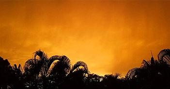 """Điều gì gây ra cơn bão cát bụi khổng lồ """"Godzilla""""?"""