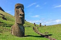 Thuốc chống lão hóa dưới đầu tượng khổng lồ trên đảo Phục Sinh