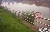 Tưởng bà cụ nhảy sông tự tử, lập tức báo cảnh sát tới cứu rồi tẽn tò