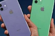 Bức tranh đầy đủ về các tính năng trên iPhone 11, 11 Pro và 11 Pro Max