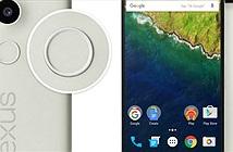 Nexus 5X, Nexus 6P:  Gấp đôi số lượng, gấp đôi liều lĩnh