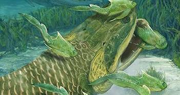 """""""Thủy quái"""" ăn thịt cá mập có thể là tổ tiên của con người"""