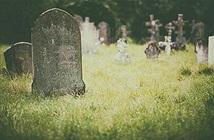 """Chuyện lạ hôm nay: Cha đã chết """"sử dụng"""" điện thoại, con gái tá hỏa..."""