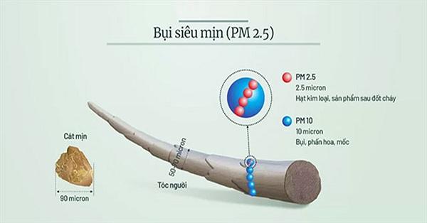 Hành trình của bụi siêu mịn trong phổi người