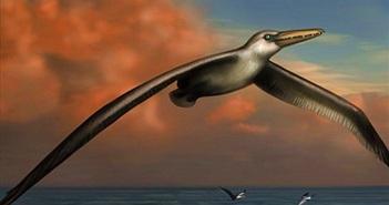 25 sinh vật cổ đại gây nguy hiểm đến nhân loại nếu tồn tại (phần 1)