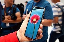 Apple chưa bao giờ có kế hoạch trang bị cảm biến vân tay cho iPhone X