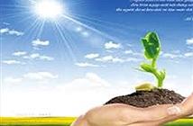 Đà Nẵng: 5 dự án khởi nghiệp được hỗ trợ thương mại hóa sản phẩm