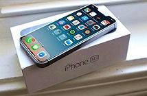 Thêm bằng chứng cho thấy iPhone SE 2 chuẩn bị ra mắt