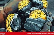 Một bể đào tiền mã hóa chiếm tới 50% Hashrate Bitcoin Cash