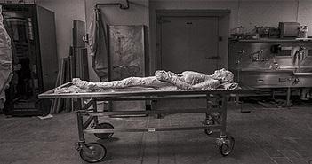 Người phụ nữ tình nguyện bào vụn thi thể mình thành 27.000 lát để số hóa và giảng dạy y học