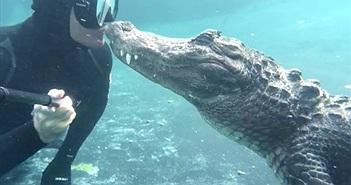 """Nụ hôn """"sốc"""" khi thợ lặn chạm trán cá sấu khổng lồ"""