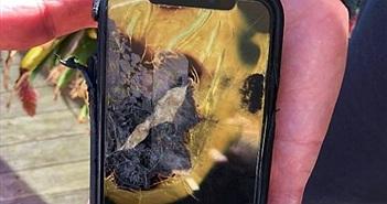 Apple bị kiện vì iPhone X phát nổ trong túi quần