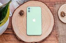 Bảng giá iPhone đầu tháng 3 - iPhone 12 giảm 7 triệu, iPhone Xs Max chỉ còn 12,19 triệu